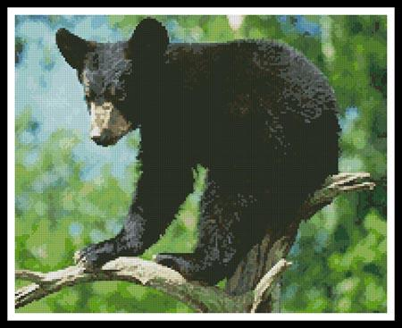click here to view larger image of Black Bear Cub (chart)