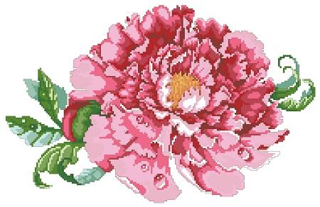 click here to view larger image of Luscious Tree Peony (chart)