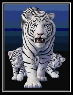 click here to view larger image of White Tigers (chart)