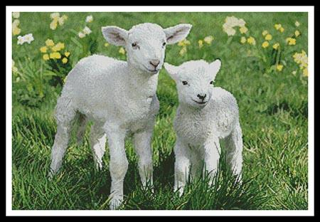 click here to view larger image of Easter Lambs (chart)