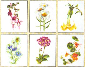 click here to view larger image of Flowers III (Floral Studies 4) - 6 Designs - Aida (counted cross stitch kit)