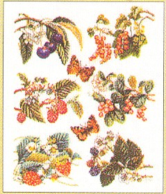 click here to view larger image of Fruit 6 Designs (counted cross stitch kit)
