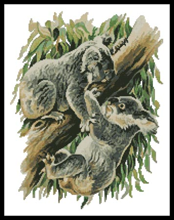 click here to view larger image of Koala Argument  (Gerry Forster) (chart)