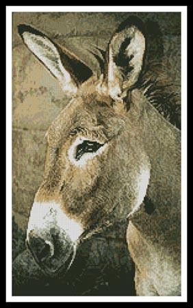 click here to view larger image of Donkey (chart)