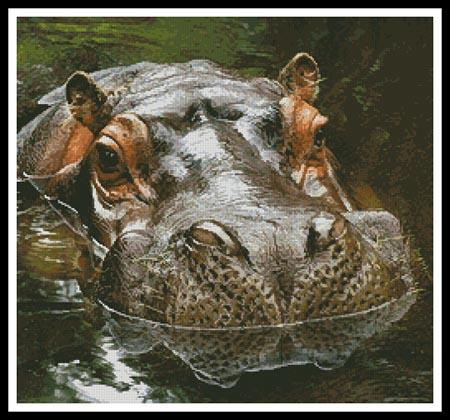 click here to view larger image of Hippo Reflection (chart)