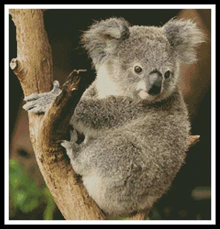 click here to view larger image of Koala on a Branch (chart)