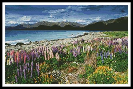 click here to view larger image of Lake Tekapo, New Zealand  (chart)