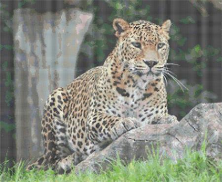 click here to view larger image of Leopard 3 (chart)