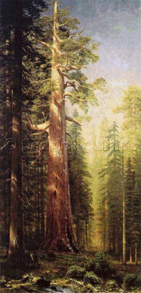 click here to view larger image of Great Trees, The - Mariposa Grove, California (chart)