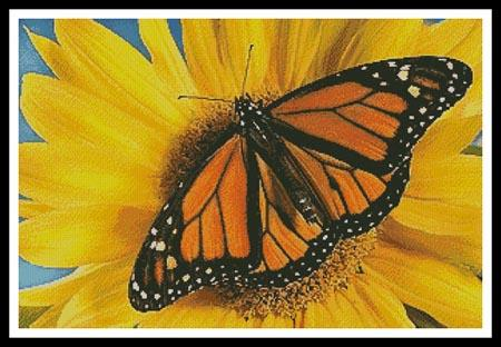 click here to view larger image of Monarch Sunflower (chart)