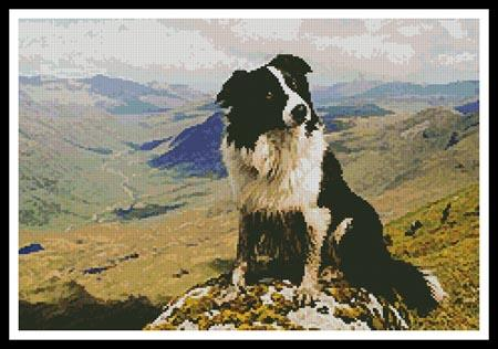 click here to view larger image of Border Collie in the Hills (chart)