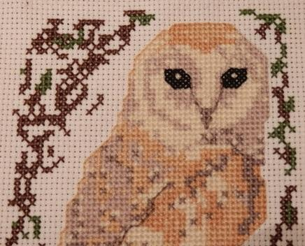 click here to view larger image of Birds Series Barn Owl (chart)
