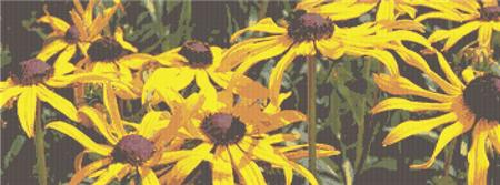 click here to view larger image of Black Eyed Susans (chart)