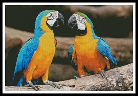 click here to view larger image of Blue and Yellow Macaws (chart)
