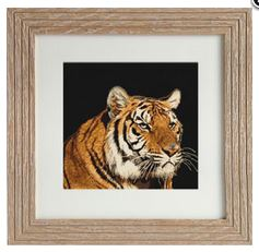 click here to view larger image of Tiger (counted cross stitch kit)