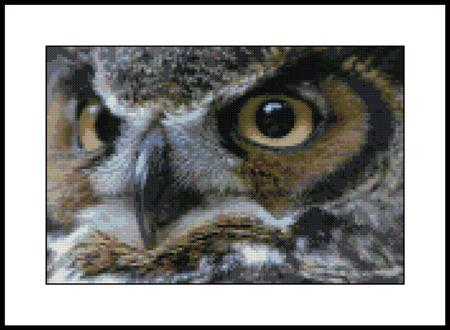 click here to view larger image of Great Horn Owl (chart)
