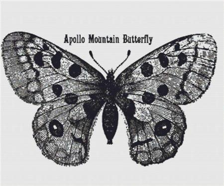 click here to view larger image of Apollo Mountain Butterfly (chart)