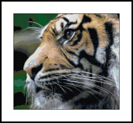 click here to view larger image of Bengal Tiger (chart)