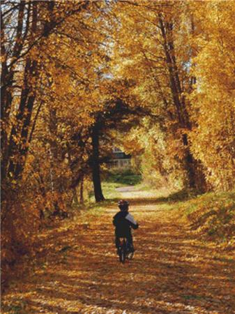 click here to view larger image of Boy in Autumn (chart)