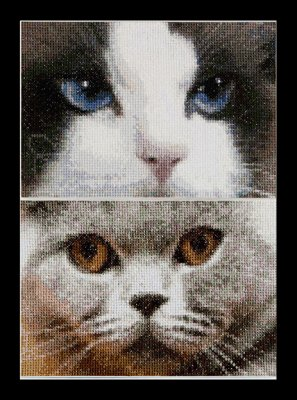 click here to view larger image of Cats - Smokey and Bleu - Aida (counted cross stitch kit)