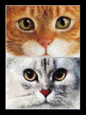 click here to view larger image of Cats - Tiger and Kitty - Aida (counted cross stitch kit)