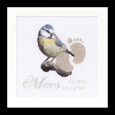click here to view larger image of Birth Sampler - Mees - 36ct (counted cross stitch kit)