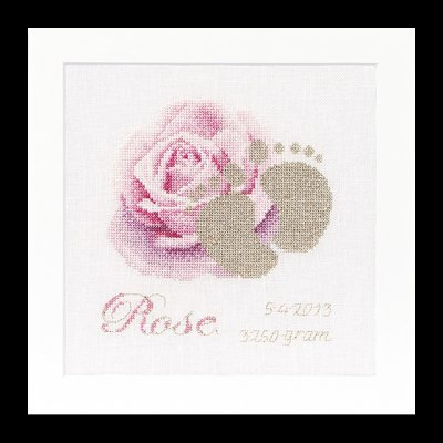 click here to view larger image of Birth Sampler - Rose - Aida (counted cross stitch kit)