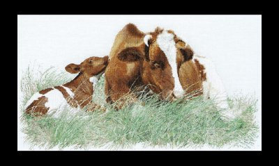 click here to view larger image of Red Cow - 32ct (counted cross stitch kit)