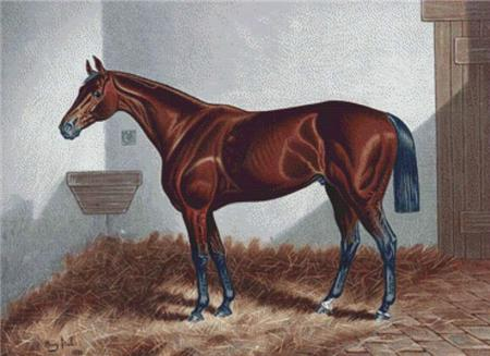 click here to view larger image of Chestnut Horse (chart)