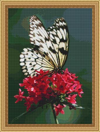 click here to view larger image of Butterfly Splendor (chart)