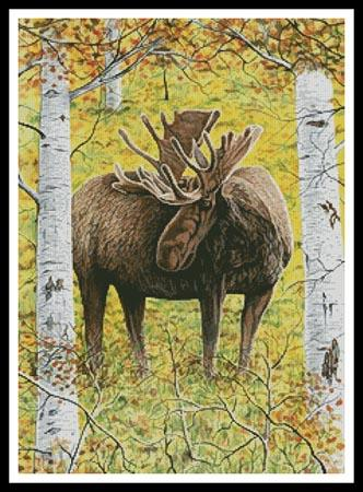 click here to view larger image of Moose in the Meadow (chart)