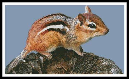 click here to view larger image of Chipmunk (chart)