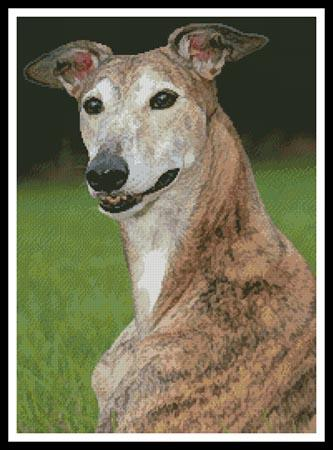 click here to view larger image of Brindle Greyhound (chart)