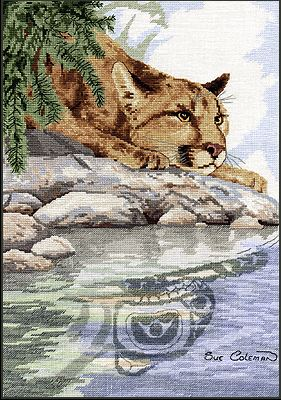 click here to view larger image of Cougar Reflection (chart)
