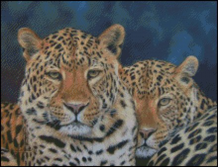 click here to view larger image of 2 Leopards (chart)