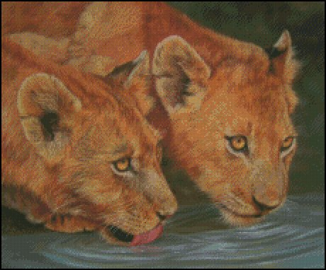 click here to view larger image of 2 Lion Cubs Drinking (chart)