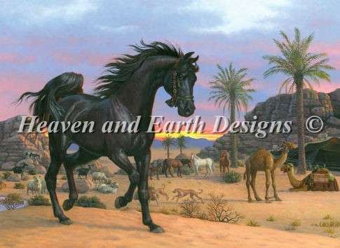 click here to view larger image of Arabian Sunset (chart)