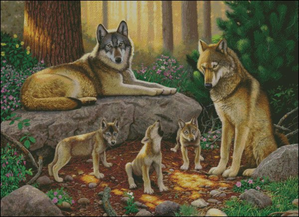 click here to view larger image of Family of Wolves, A (chart)