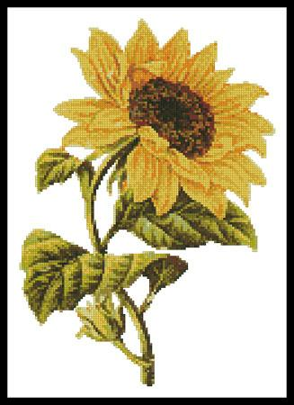 click here to view larger image of Golden Sunflower (chart)
