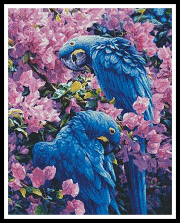 click here to view larger image of Hyacinth Macaws (chart)
