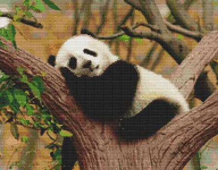 click here to view larger image of Napping Panda (chart)