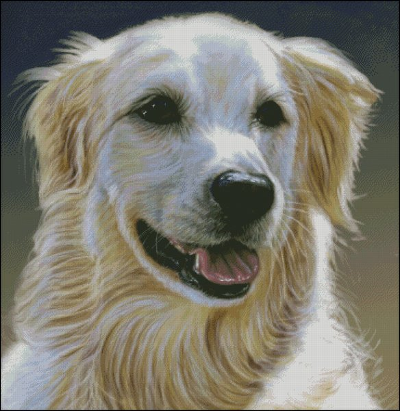 click here to view larger image of Golden Retriever - Carlson (chart)