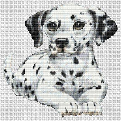 Dalmation Puppy - click here for more details about chart