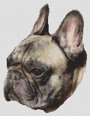 click here to view larger image of Brindle French Bulldog (chart)