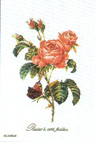 click here to view larger image of Roses - Aida (counted cross stitch kit)