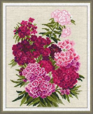 click here to view larger image of Sweet William (counted cross stitch kit)
