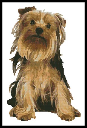 click here to view larger image of Yorkshire Terrier (chart)