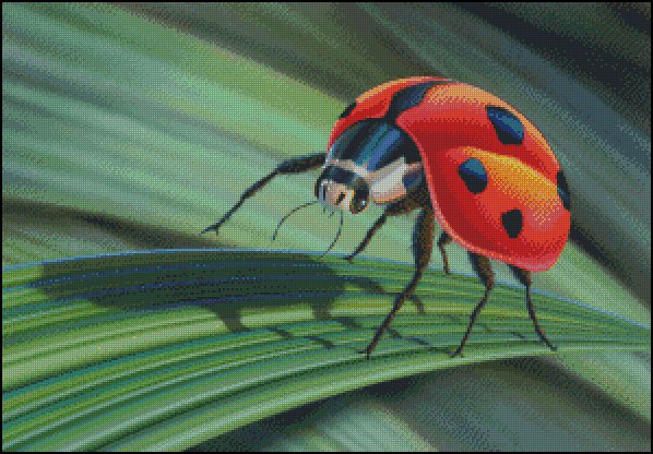 click here to view larger image of Lady Bug (chart)