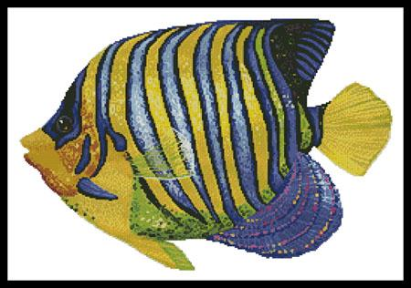 click here to view larger image of Blue and Yellow Fish (chart)