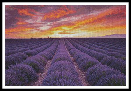 click here to view larger image of Field of Lavender At Sunrise (chart)